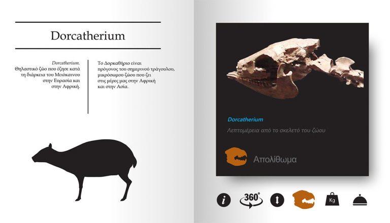 tetragon-interactive-book-08